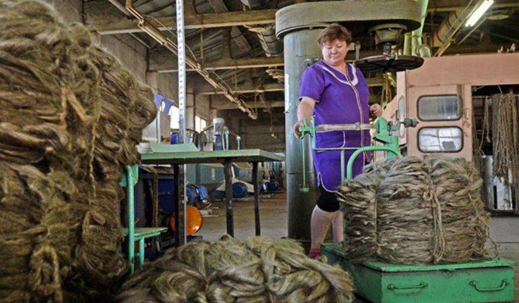 ограниченной ответственностью производство льна в костроме поиска: найдено материалов